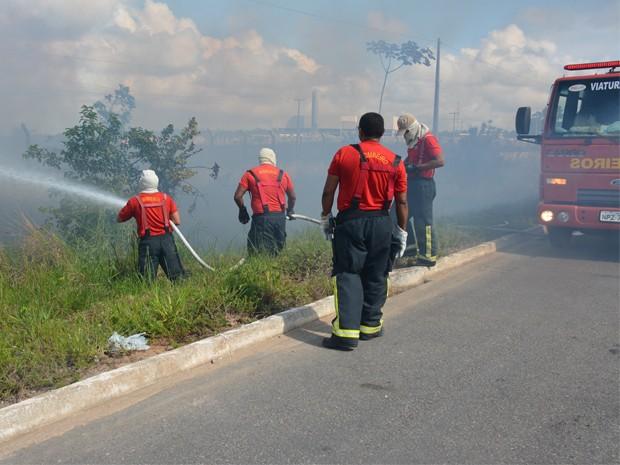 Incêndio atingiu vegetação em Santa Rita (Foto: Walter Paparazzo/G1)