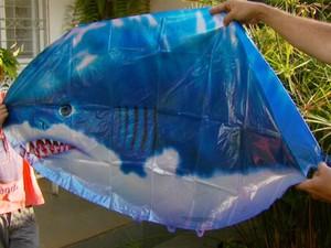 Óvni pode ser balão-tubarão. (Foto: Reprodução EPTV)