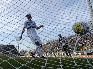 Botafogo Grêmio (Foto: Andre Durão)