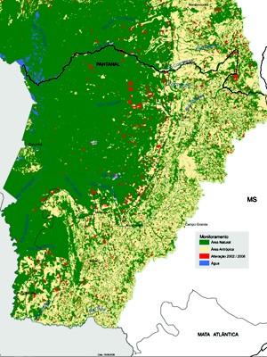 Estudo mostra que quatro municípios tiveram grande alteração de cobertura vegetal em MS (Foto: IBGE)