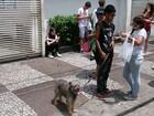 Estudante tenta relaxar levando o cão para passear antes do Enem em SP