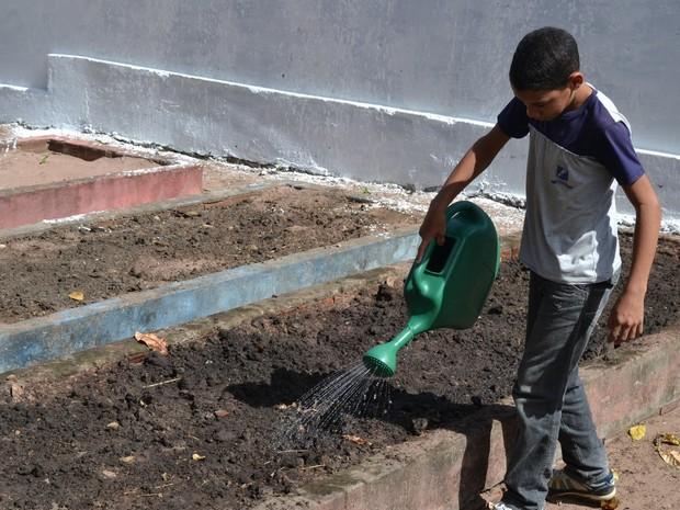 Aluno ajuda a cuidar de um dos canteiros criados na Escola Municipal Palmira de Souza, na Zona Norte, uma das primeiras inseridas no projeto (Foto: Adrovando Claro)