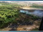 Incêndio no Cocó, em Fortaleza, destruiu nove hectares de vegetação