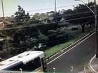 Câmera registra queda de árvore durante temporal em Bauru; vídeo