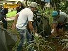 Estudantes se mobilizam para combater a dengue em Maringá