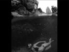 Carol Castro mostra corpaço de biquíni em foto de mergulho