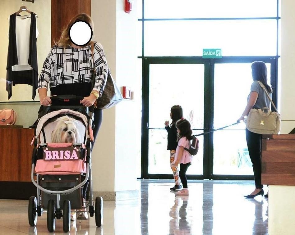 """Imagem de criança em """"coleira"""" e cachorro em carrinho de bebê causa polêmica nas redes  (Foto: Reprodução / Facebook)"""
