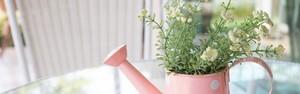 Aposte no jardim artificial para decorar os ambientes de casa (Shutterstock)