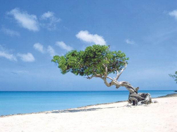 Aruba, no Caribe (Foto: Divulgação)