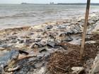 Análise em praias de Belém monitora resíduos do naufrágio de Barcarena