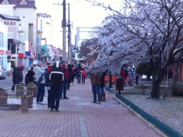 Baixas temperaturas deixaram árvores repletas de sincelo em SC (Foto: Wagner Urbano/Divulgação)