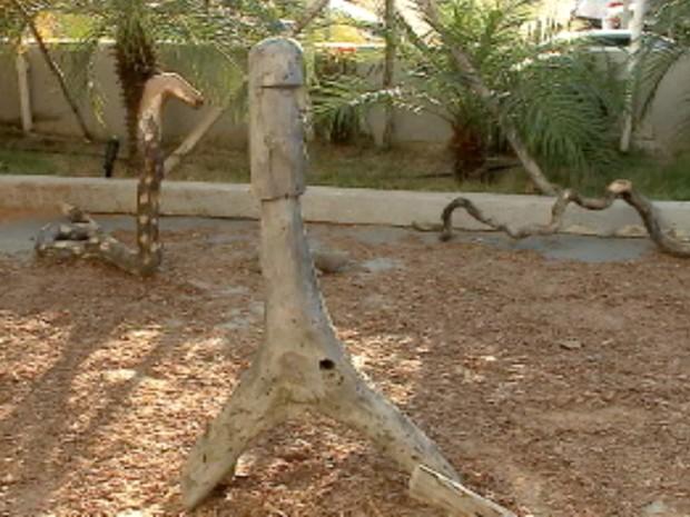 Exposição de peças de madeira em Petrolina (Foto: Reprodução/TV Grande Rio)