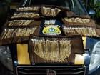 PRF apreende joias avaliadas em R$ 100 mil escondidas em carro em MS