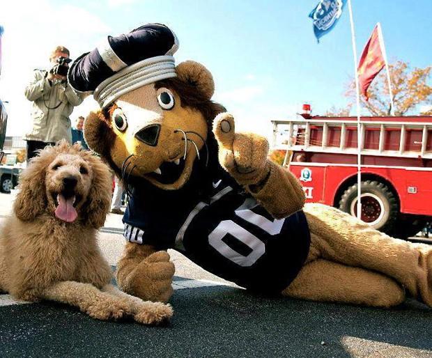 Animal posa para foto ao lado do mascote da Universidade Old Dominon (Foto: Reprodução/Facebook)