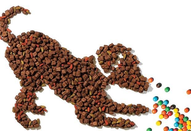 Ração - Pets - Mercado pet - cachorro - Mars (Foto: Janaina Pinho)
