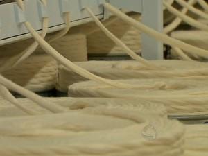 Algodão sendo beneficiado em indústria de Mato Grosso (Foto: Reprodução/TVCA)