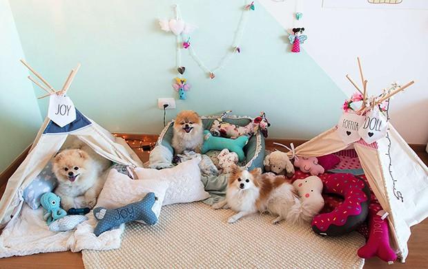 Cada cachorrinho possui seu próprio espaço para dormir (Foto: Cada cachorrinho possui seu próprio espaço para dormir)