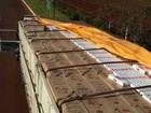 Polícia apreende caminhão lotado com cerca de 500 caixas de cigarros