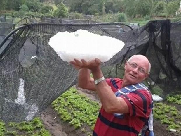 Morador de Mirandópolis mostra o granizo que atingiu horta (Foto: Juliana Sartori/TEM Você)