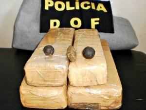 Droga foi apreendida e encaminhada a Polícia Civil.  (Foto: Divulgação / DOF)