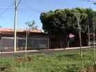 Votuporanga recebe projeto TEM Mais Verde neste domingo