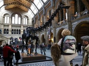 Visitantes observam o dinossauro Dippy no Museu de História Natural de Londres
