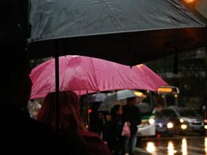Chuva deve continuar em Porto Alegre até segunda-feira (12) (Foto: Betina Carcuchinski/PMPA)