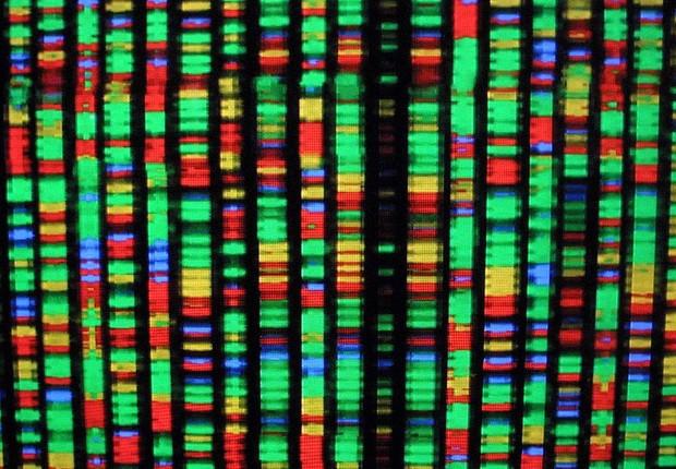 Representação digital do genoma humano (Foto: Mario Tama/Getty Images)