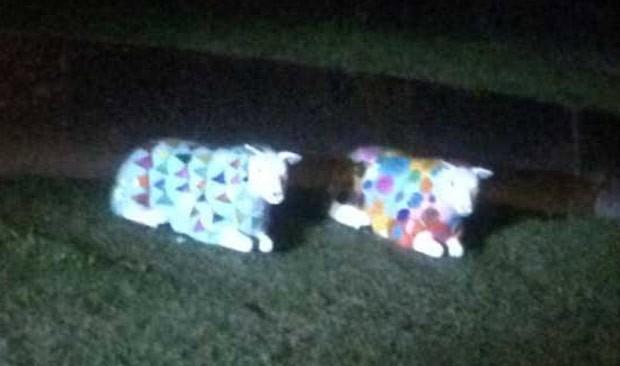 Dupla foi presa por roubar escultura de ovelha (Foto: Reprodução/Twitter/Insp Paul Wycherley)