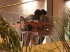 Sérgio Marone troca beijos com morena em jantar romântico no Rio