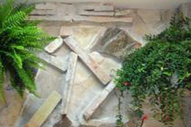 Plantas na parede de um banheiro na casa de Roger Abdelmassih em Assunção, no Paraguai (Foto: Divulgação)