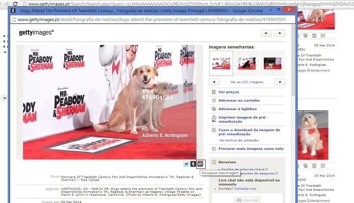 Ferramenta facilita compartilhamento de imagens em redes sociais e serviços de blogs (Reprodução/Getty Images)
