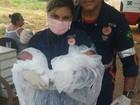 Mulher que deu à luz em lixão 'foge' de hospital  no DF para ver filho de 6 anos