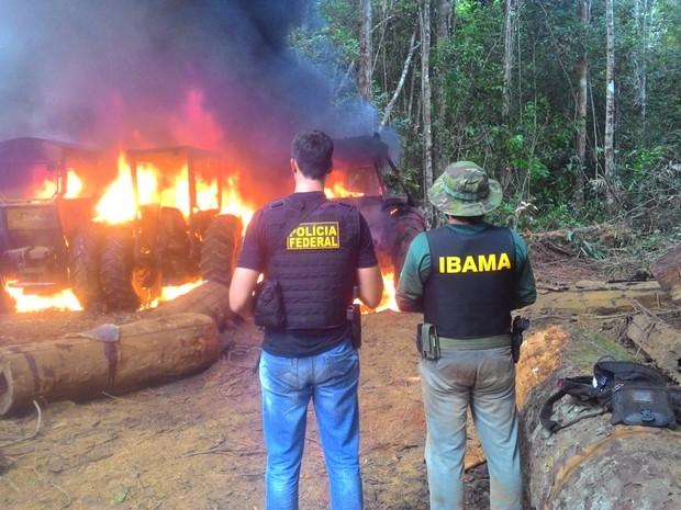 Fiscais e policiais atearam fogo em tratores e motoserras (Foto: Polícia Federal/Divulgação)
