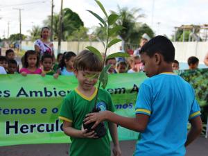 Andirobeira foi o símbolo do compromisso com o meio ambiente (Foto: Katiúscia Monteiro/ Rede Amazônica)