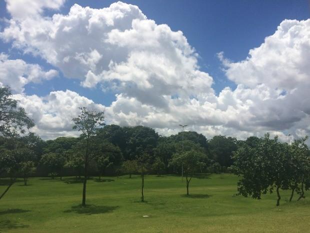 Céu de Campo Grande na tarde desta sexta-feira (19) (Foto: Maria Caroline Palieraqui/G1 MS)
