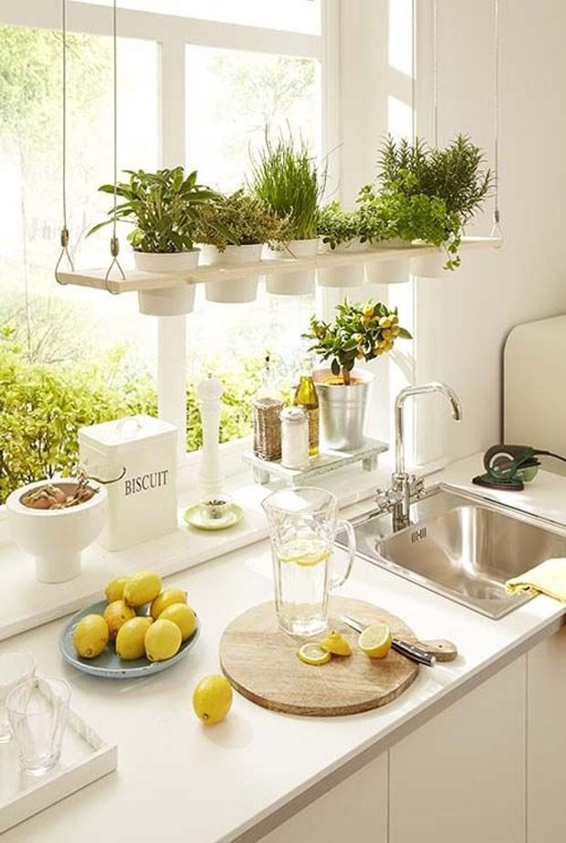 10 ideias para ter uma horta requintada dentro de casa for Maceteros para salon