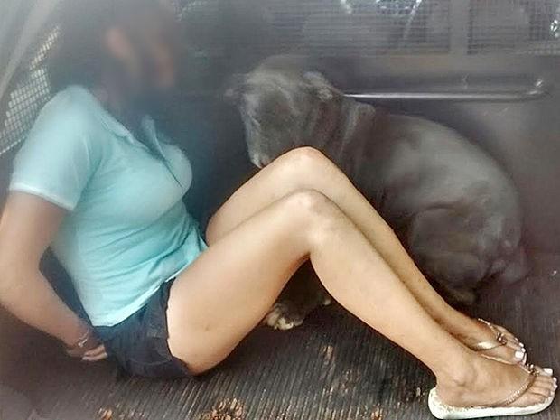 Cadela entrou em viatura ao ver dona ser presa por tráfico de drogas em Comodoro (MT) (Foto: Assessoria/Polícia Civil de MT)