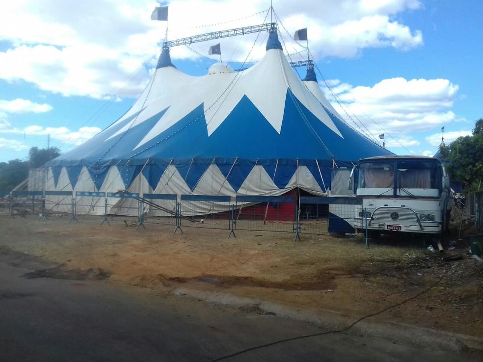 Dono de circo foi detido suspeito de furtar energia elétrica (Foto: Polícia Civil/Divulgação)
