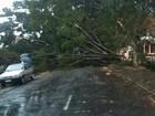 Um dia após temporal, falta de energia afeta 48 mil na região de Campinas