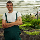 Cultura orgânica fatura R$ 2,5 bilhões por ano