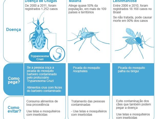 Bem Estar - Infográfico sobre malásia, leishmaniose e Chagas (Foto: Arte/G1)