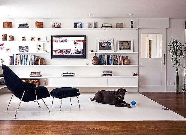 O porcelanato é uma boa pedida para quem tem animais dentro de casa (Foto: Shutterstock)