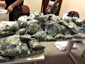 Policia apreendeu indígena com 150 pacotes de folhas de coca (Foto: Divulgação/Polícia Civil de Feijó)