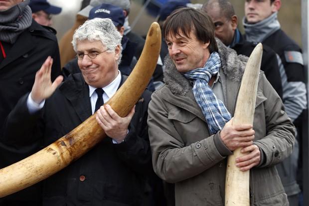 Ministro francês da Ecologia, Desenvolvimento Sustentável e Energia, Philippe Martin (esq.) e ativista ambiental Nicolas Hulot posam com presas de marfim (Fot Reuters/Charles Platiau)