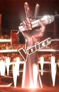 The Voice inicio 2 (Foto: Tv Globo)