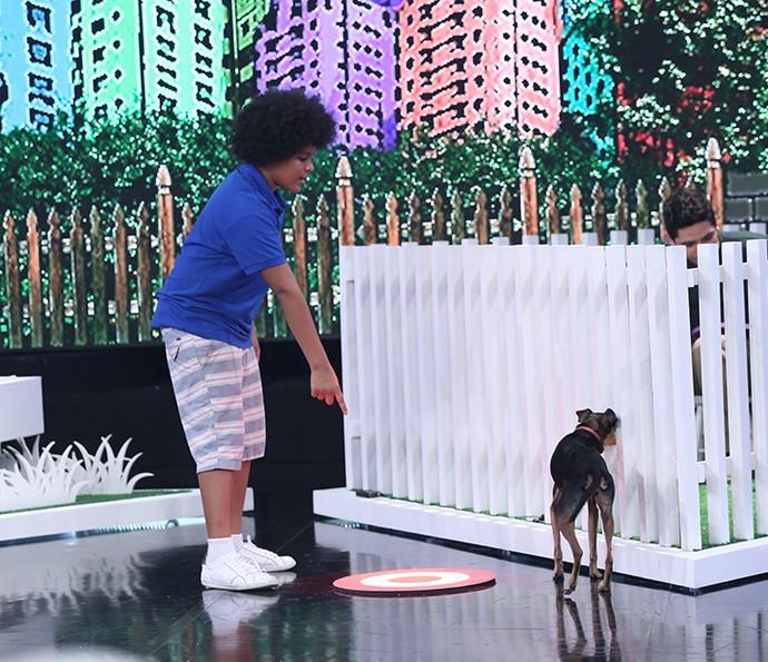 Max não se sentiu intimidado com presença dos outros animais (Foto: Carol Caminha/Gshow)