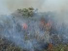 Corumbá, MS, é 4ª cidade do Brasil com mais focos de incêndio
