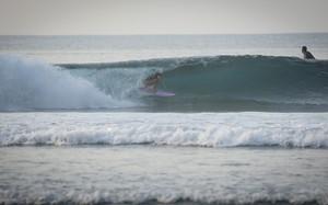 claudinha + indonésia