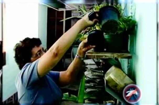 Prevenção contra a dengue (Foto: Reprodução / TV TEM)